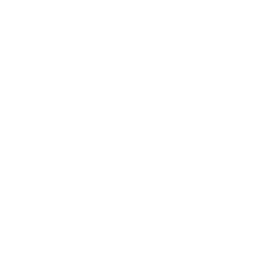 Building Mind Icon