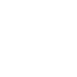 Drone Deliver Apple Icon