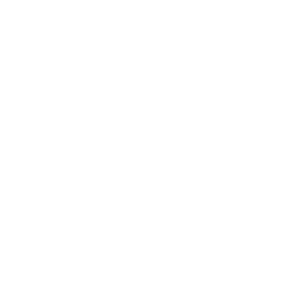 Drone Deliver Envelope Icon