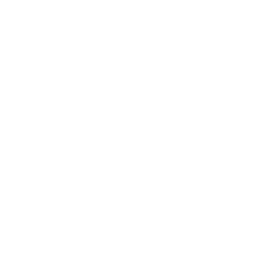 Drone Deliver Hamburger Icon