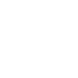 Drone Fleet Settings Icon