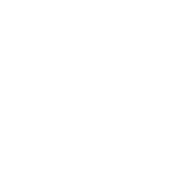 Drone Multi Direction Icon