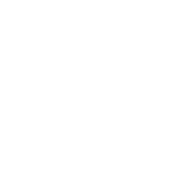Drone No Eye Icon