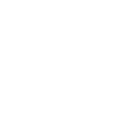 Drone Settings Icon