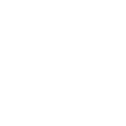Drone Wrench Icon