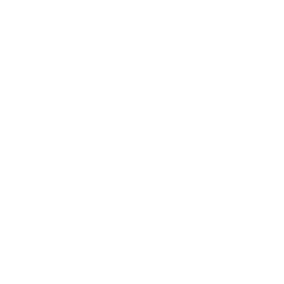 Field Plants Drone Icon
