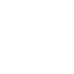 Forest Fire Drone Icon