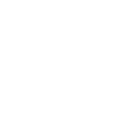 House Roof Drone Icon