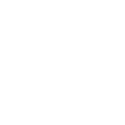House Sold Checkmark Drone Icon