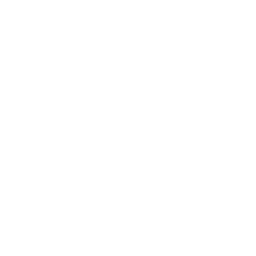 Money Stack Drone Icon