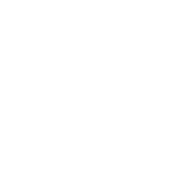 Propellor Ring Icon