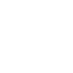 Quadcopter Variant 2 Drone Top Icon