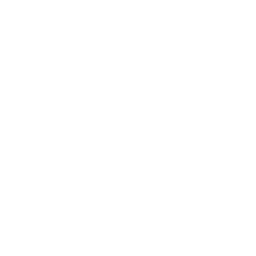 Quadcopter Variant 2 Drone Icon
