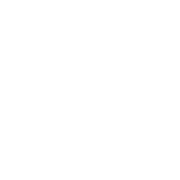 Quadcopter Variant Drone Top Icon