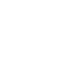 Shipping Box Mind Icon
