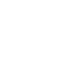Shopping Cart Drone Checkmark Icon