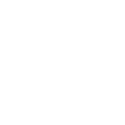 Shopping Cart Drone Money Icon