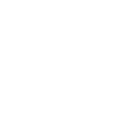 Shopping Cart Drone Repeat Icon