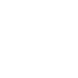 Shopping Cart Drone Icon