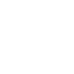 Street Block Drone Deliver Icon
