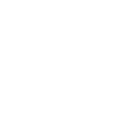 Thermal Drone Icon