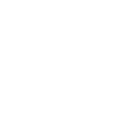 Transmission Towers Drone Icon