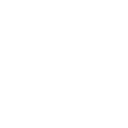 Wedding Drone Icon